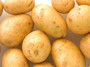 Красные сорта картофеля с фото и описанием