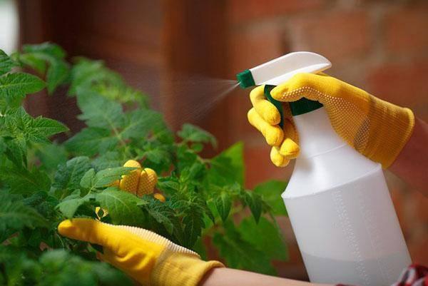 Жидкий гумат калия: правила применению в саду и дома