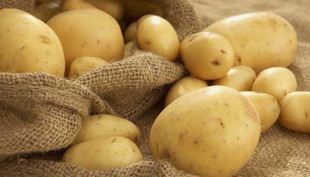 Определение химического состава картофеля - сад и огород