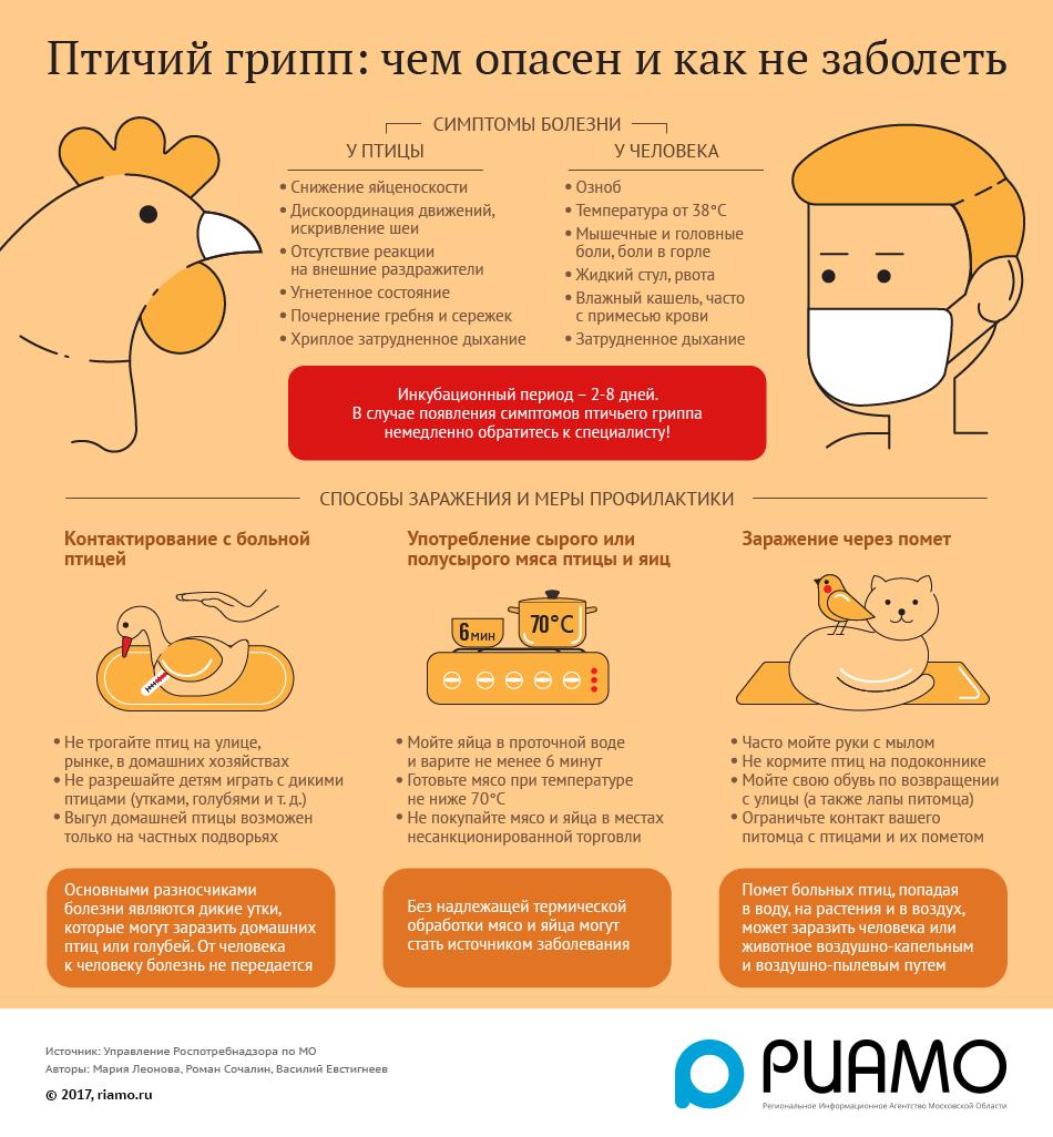 Птичий грипп у кур и петухов