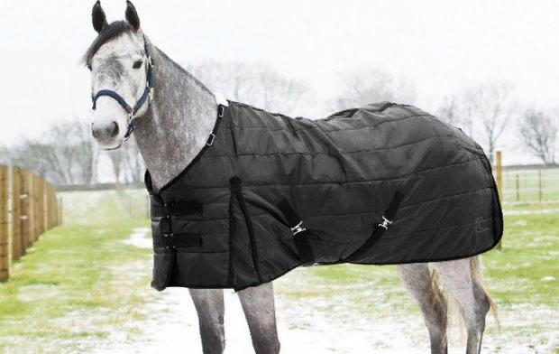 Попона для лошади: выкройка своими руками, предназначение и виды
