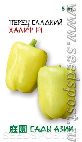 Перец халиф f1: отзывы, фото, урожайность и описание сорта