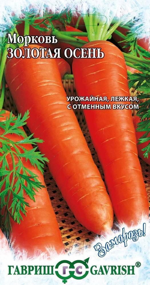 """Морковь """"королева осени"""": описание сорта , характеристика и особенности выращивания, отзывы фермеров"""