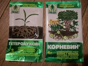 Корневин: инструкция по применению для рассады, черенков и комнатных растений