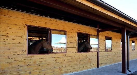 Денник для лошади: что это такое? размеры стойла для коней, таблички и маты для скота