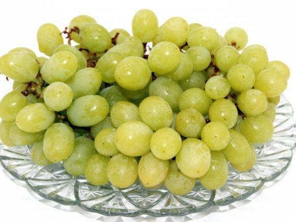 Виноград белое чудо описание, фото, отзывы. характеристика