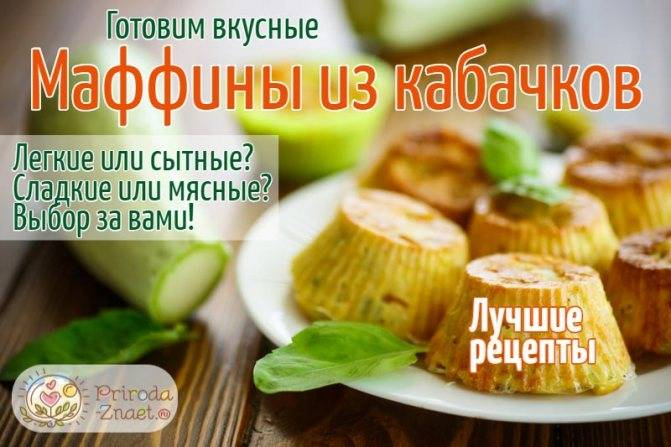 Сколько калорий в жареных кабачках, сырых, запеченных, их состав и полезные свойства