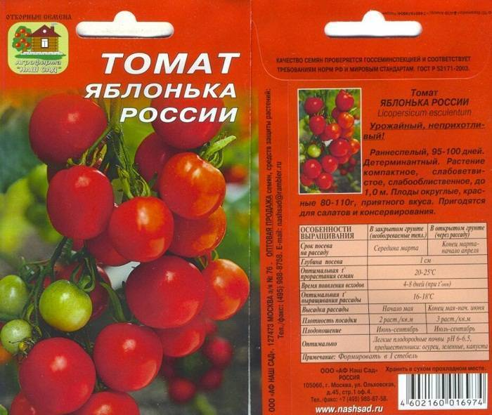 Характеристика и описание томата «яблонька россии»