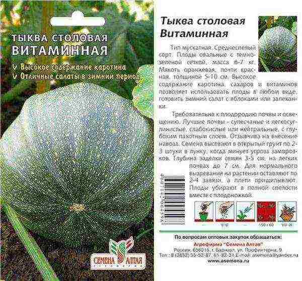 Лучшие сорта лёжкой тыквы – flora-info.net