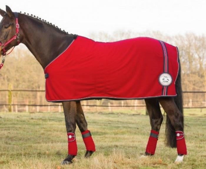 Как сшить попону для лошади своими руками: шерстяное покрывало, дождевая полупопона