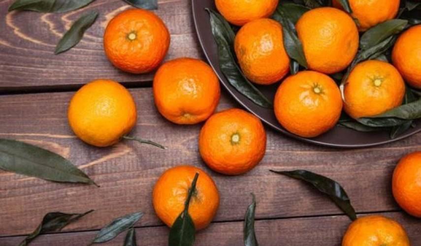 Клементины: что это такое, фото фрукта