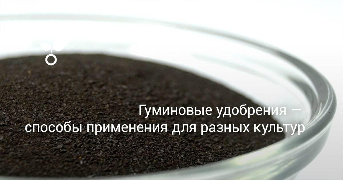 Что такое калийные гуминовые удобрения и как их применять