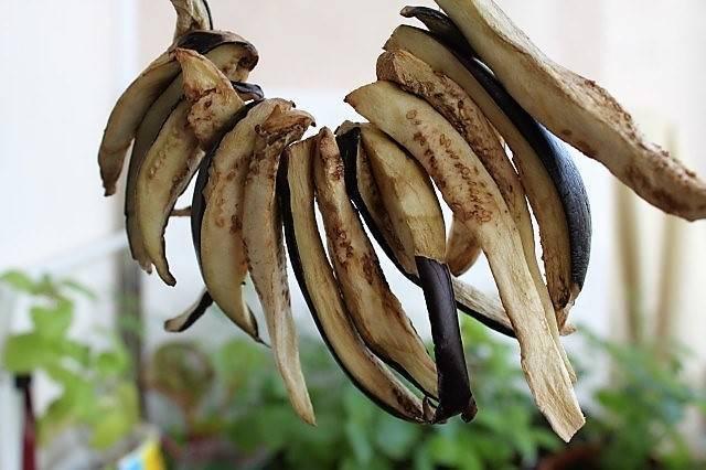 Как сушить баклажаны на зиму: можно ли, 4 лучших рецепта, условия хранения
