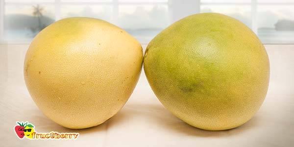Как выбрать помело в магазине спелый и сладкий