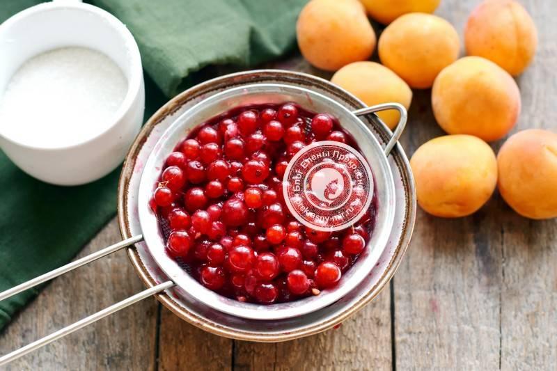 Как варить компот из абрикосов – правила и рецепты на зиму