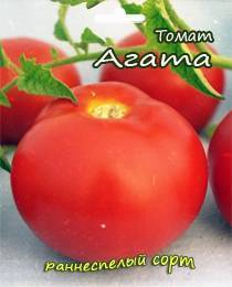 Томат агата - отзывы, характеристика и описание сорта