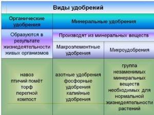 Органические удобрения их виды и характеристика для сельского хозяйства