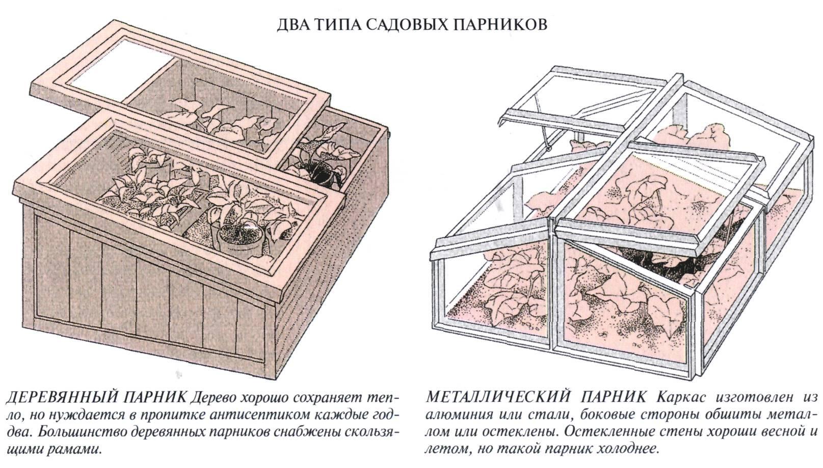 Правила и секреты выращивания, парник для перца своими руками