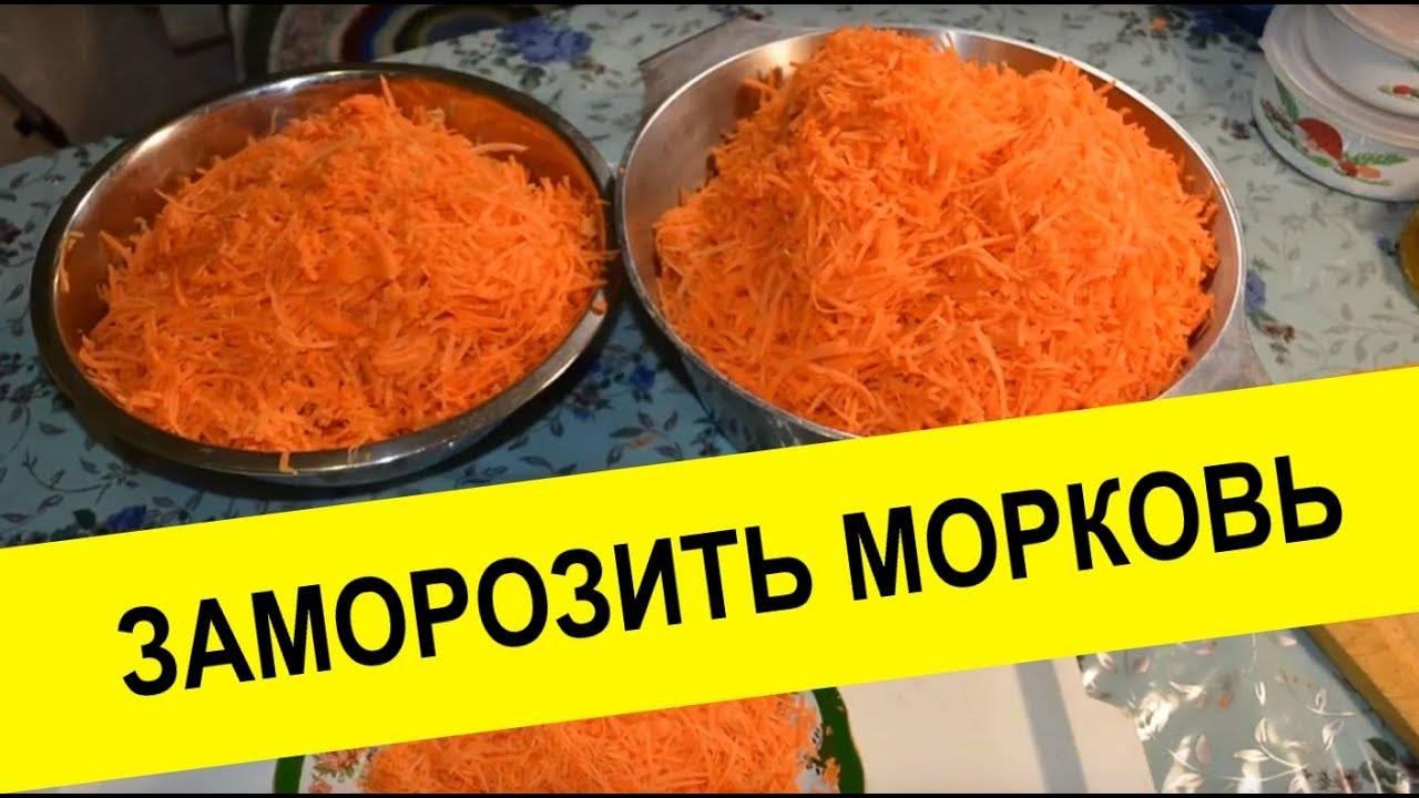Можно ли заморозить тертую морковь на зиму: также как сохранить корнеплод целиком или в вареном виде? selo.guru — интернет портал о сельском хозяйстве