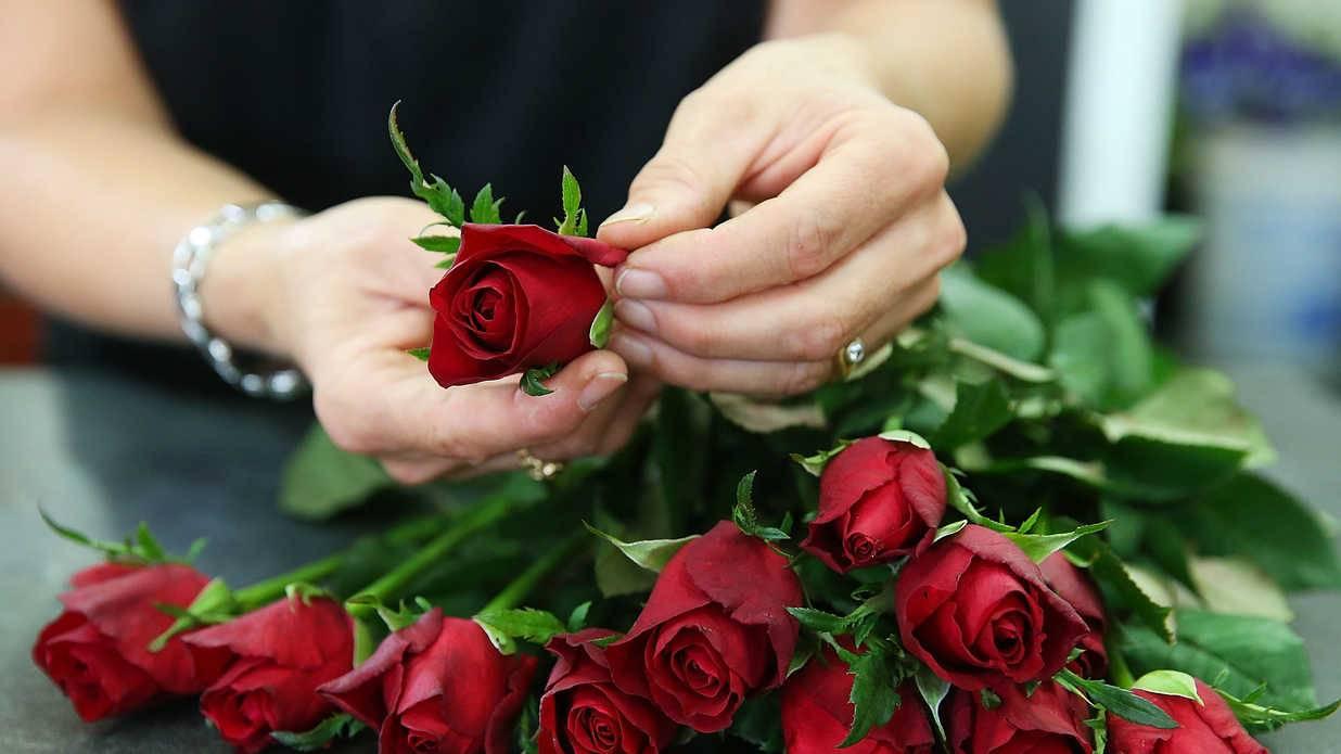 Как сохранить розы в вазе дольше всего: продлеваем жизнь