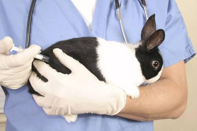 Профессионально и надёжно лечим инфекционный ринит.