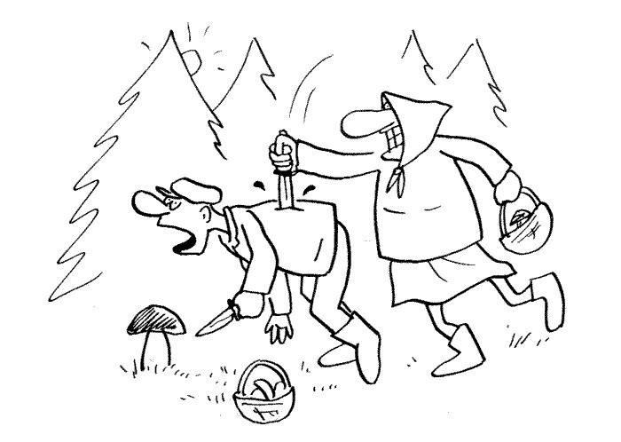 Клуб грибников – всё про грибы