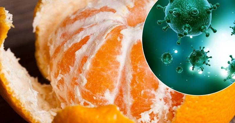 Полезные свойства мандаринов и противопоказания к употреблению