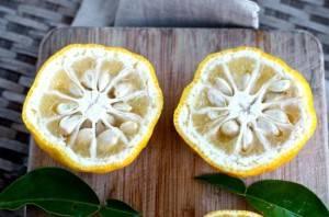 Юдзу что это такое и какого вкуса, описание и применение фрукта