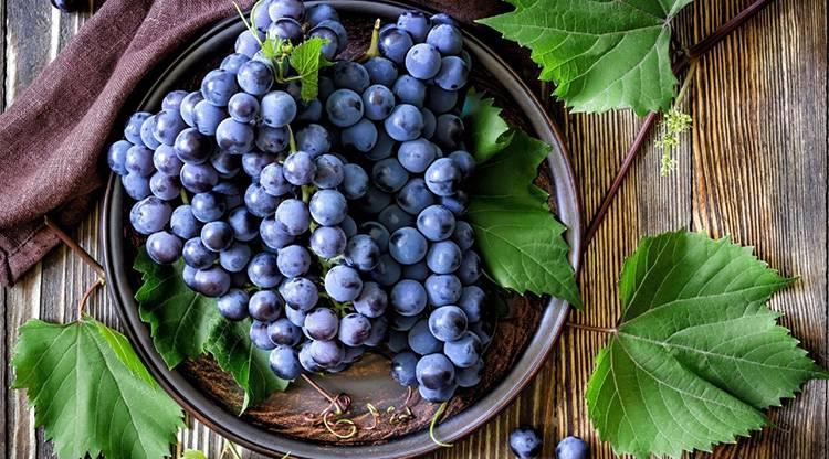 Виноградный сахар: польза и вред, отзывы. виноградный сахар