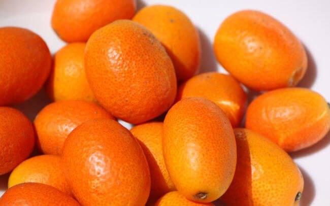 Не выбрасывайте корочки от мандаринов: варианты применения на даче | lifestyle | селдон новости