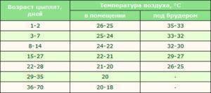 Температура для бройлеров: таблица оптимальных показателей для содержания