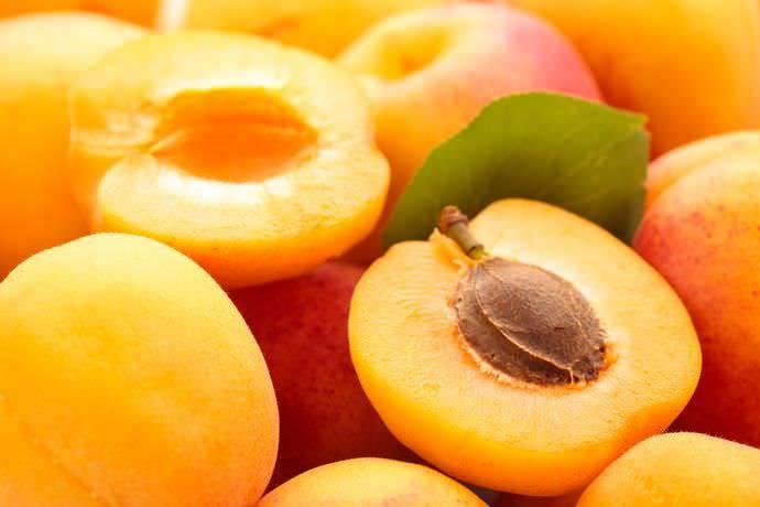 """Посадка и уход за колоновидным абрикосом сорта """"принц март"""""""