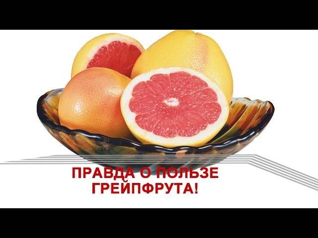 Какой грейпфрут купить в магазине, советы и критерии выбора вкусного фрукта