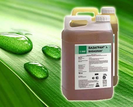 Базагран - гербицид от сорняков, инструкция по применению, расход