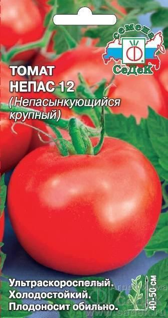 Самые урожайные низкорослые и непасынкующиеся сладкие сорта помидор серии непас