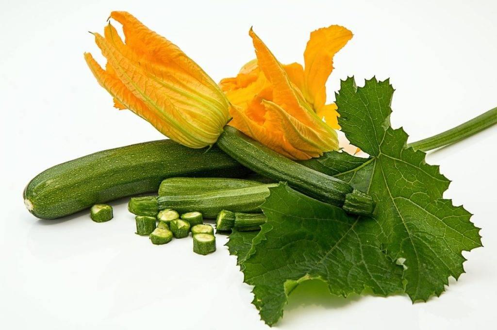 Травы, повышающие аппетит - для нормализации пищевого баланса   компетентно о здоровье на ilive