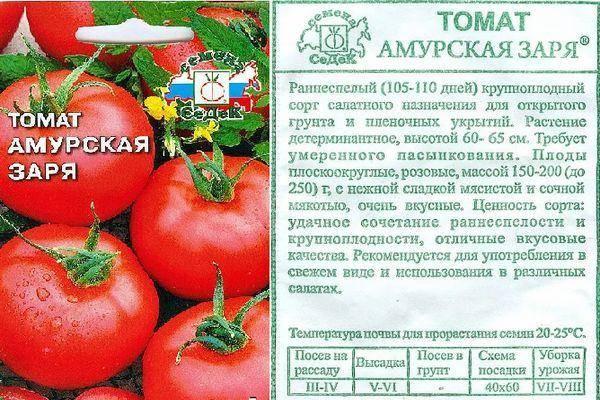 Томат чибис