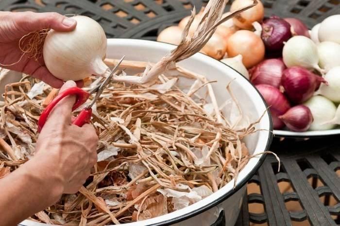 Как хранят лук - способы хранения лука   инфрост