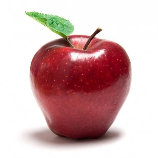 Самое большое яблоко в мире: фото