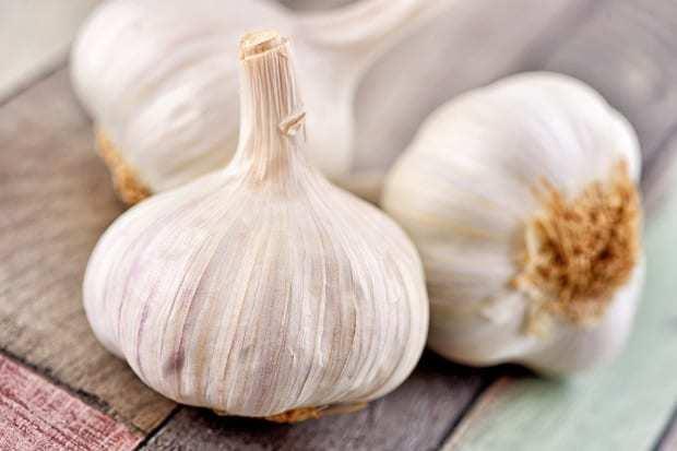 Чеснок: калорийность и содержание белков, жиров, углеводов