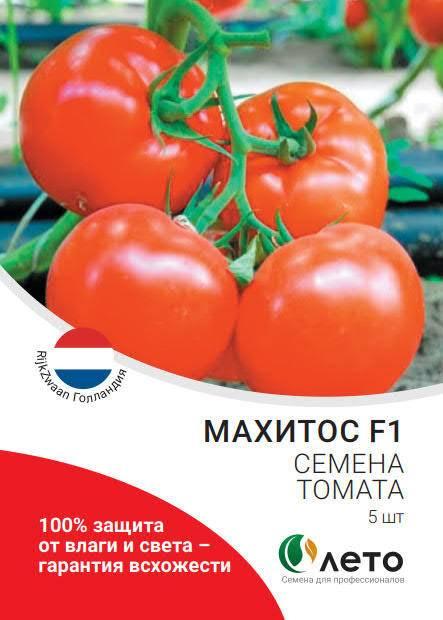 Томат-гигант: описание и секреты выращивания сорта махитос
