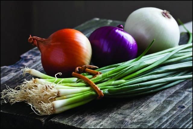 Как правильно обработать лук севок перед посадкой от болезней и вредителей: чем и как провести обработку