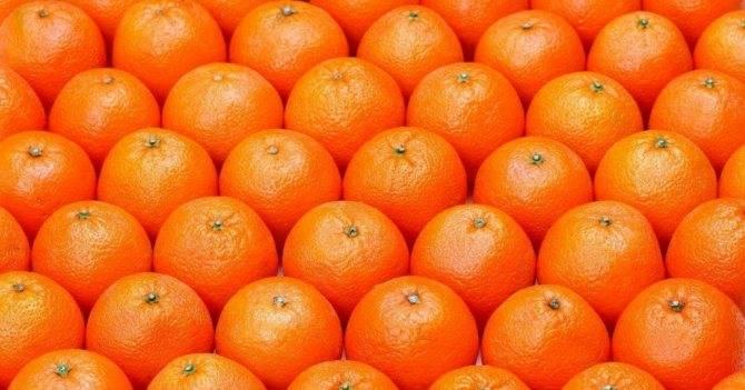 Сонник зеленые мандарины. к чему снится зеленые мандарины видеть во сне - сонник дома солнца