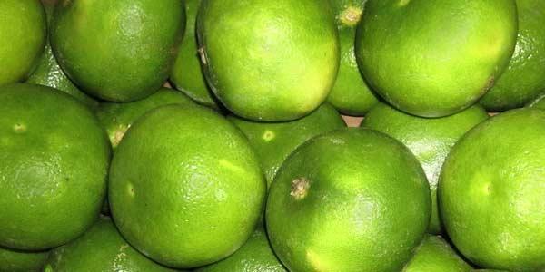 Свити — описание фрукта, фото, полезные свойства и противопоказания, состав, калорийность