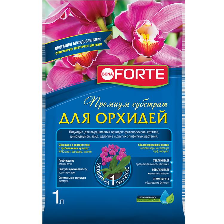 Лучшее удобрение для орхидей: отзывы о том, какое из них самое хорошее и чем подкормить экзотическую красавицу