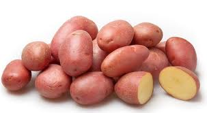 10 самых популярных сортов картофеля. описание и фото — ботаничка.ru