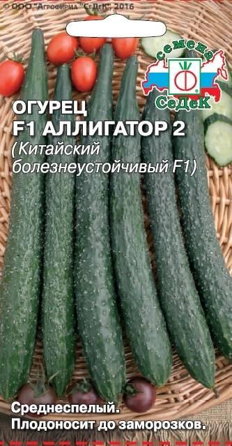 Огурец аллигатор f1: отзывы, фото, описание сорта