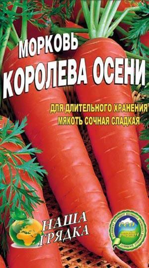 Королева осени, морковь: описание сорта и характеристика урожайности, отзывы дачников, рекомендации, когда убирать, фото, особенности посадки и хранения