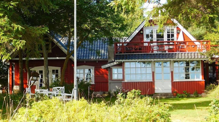 Крот в огороде: как избавиться от крота в огороде навсегда, народные средства