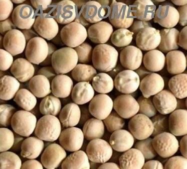 Как прорастить горох в домашних условиях: правила выбора и замачивания семян, инструкция по проращиванию для посадки